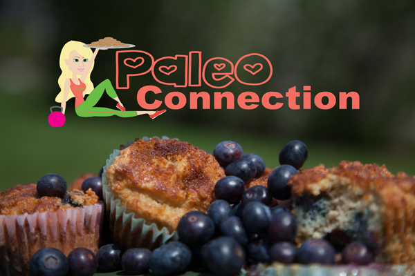 Sarasota Web Design Project for Paleo Connection